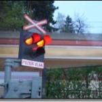Skautský vlakový sen